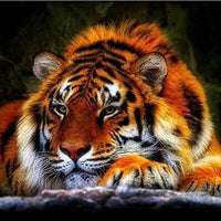 Lazy Tiger - 5D Diamond Painting - 5D Diamond Painting - DIY Kits
