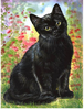 Black Cat and Flowers - 5D Diamond Painting - 5D Diamond Painting - DIY Kits