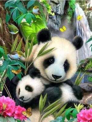 Common Pandas - 5D Diamond Painting - 5D Diamond Painting - DIY Kits