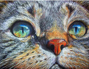 Cat Zen - 5D Diamond Painting - 5D Diamond Painting - DIY Kits