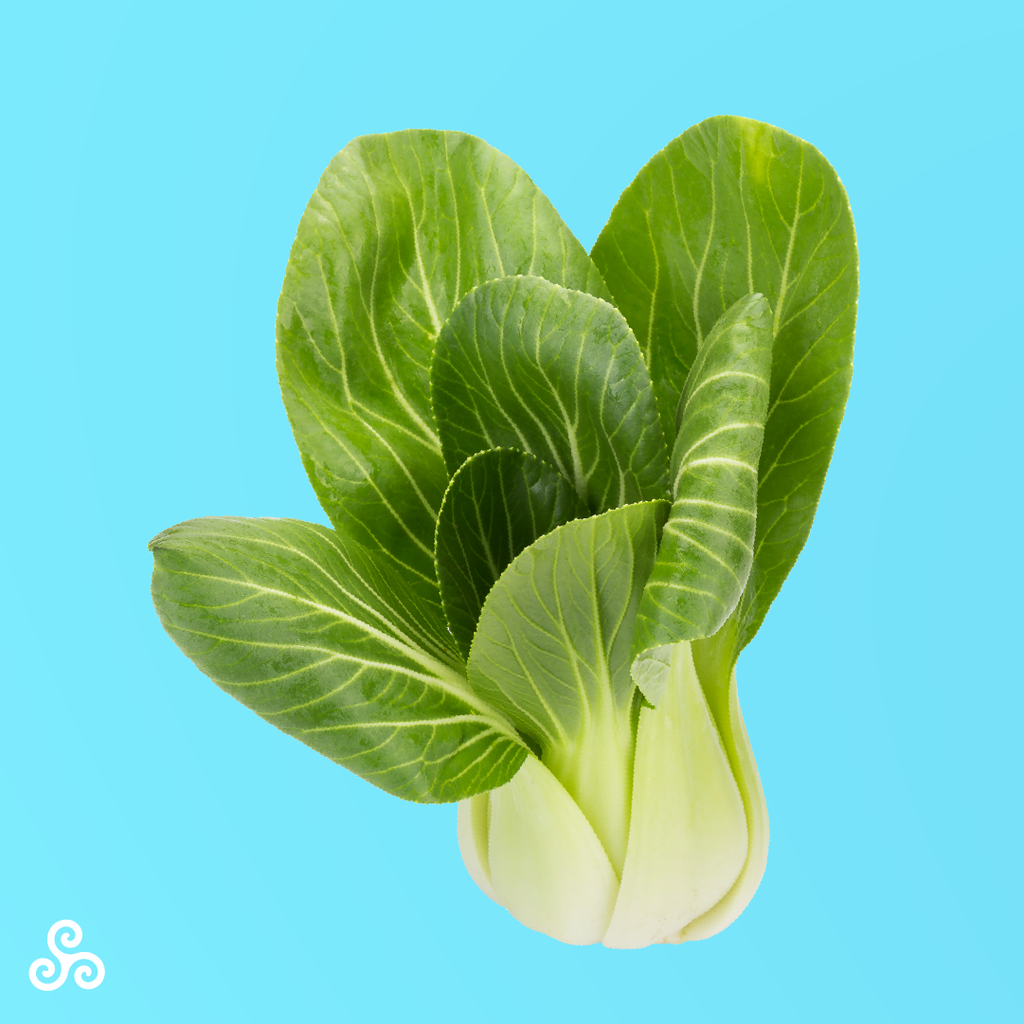 Sweet, tender and crunchy, our Bok Choy can be the main ingredient in your next stir-fry or wrap. Chop up the stem coarsely and throw it in a hot pan 60 seconds before the leaves, then remove from heat before any of the Bok Choy gets too soft. Pairs well with soy sauce and garlic.