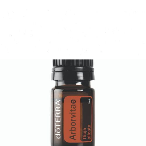 Arborvitae Essential Oil 5ml