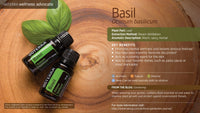 Basil 15ml - Be Essentially Healthy