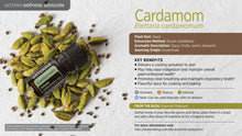 Cardamon 5ml - Be Essentially Healthy