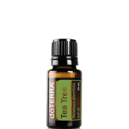 Tea Tree Essential Oil (Melaleuca) 15ml