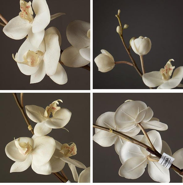 Artificial White Moth Orchid, Artificial Flowers, Artificial Botany Plants, Silk Flower Arrangement - Art Painting Canvas