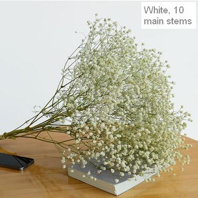 Dried Babys Breath Bunch, Dried Flowers, Gypsophila, GYP, Wedding Mason Jar Filler