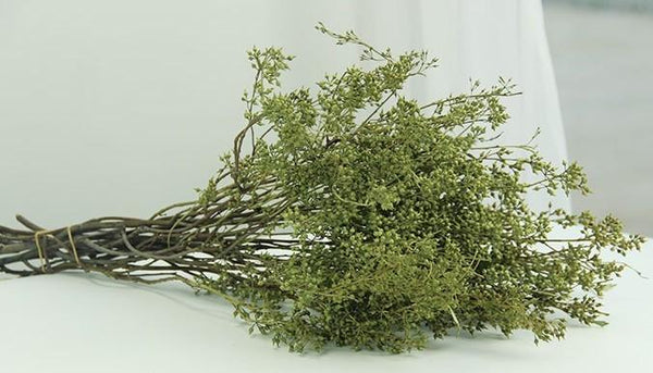Dried Seek, Dried Flowers, Botanical Home Decor, Seed Stalks. Natural Greenery
