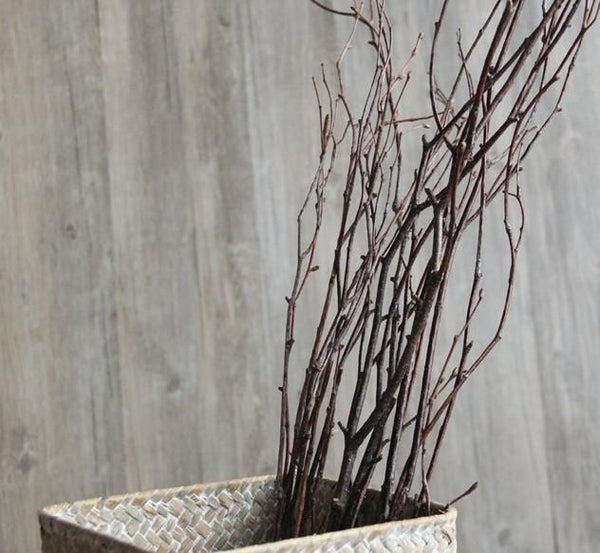Dried Birch Branches, Flower Arrangement, Natural Branches, Dried Branches, Rustic Decor
