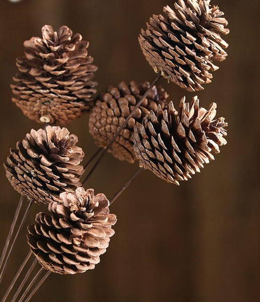 Natural Pine Cones, Pinecones, Flower Arrangement, Fall Decor, Wedding Decor, Pine Cone Crafts