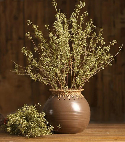 Dried Seed Pods, Seed Stalks, Natural Greenery, Dried Flowers. Floral arrangements, bouquets