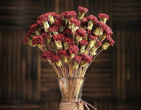 Dried Carnation, Flower Arrangement, Dried Decor, Natural Decorations