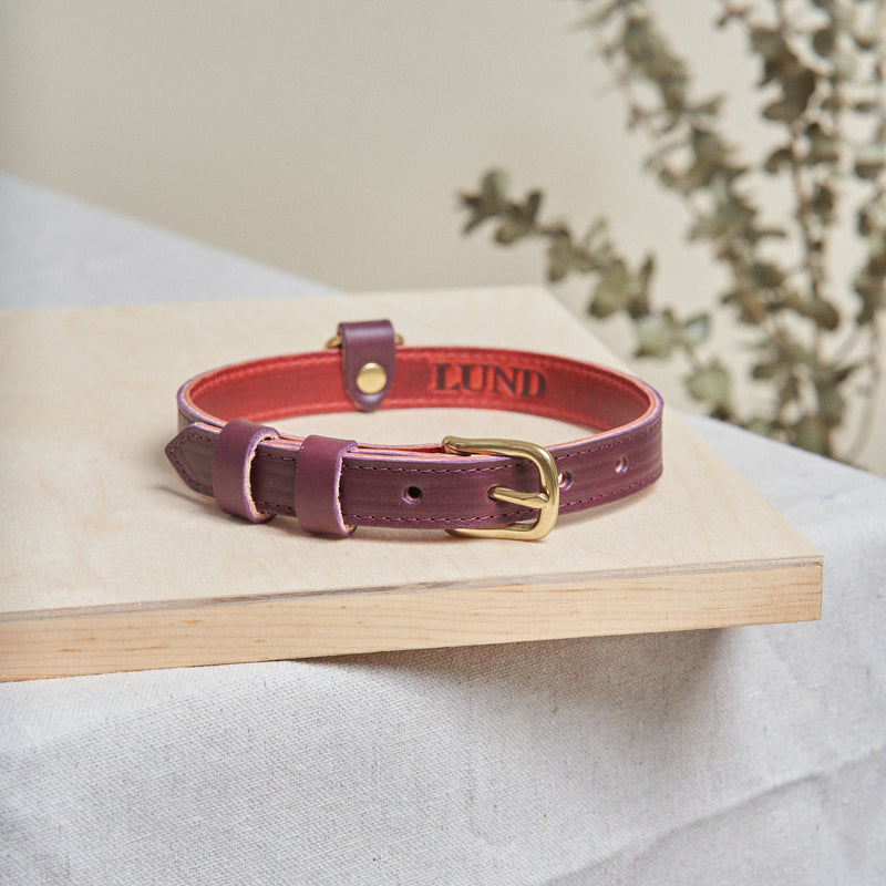 Dog Collar - Eggplant Purple
