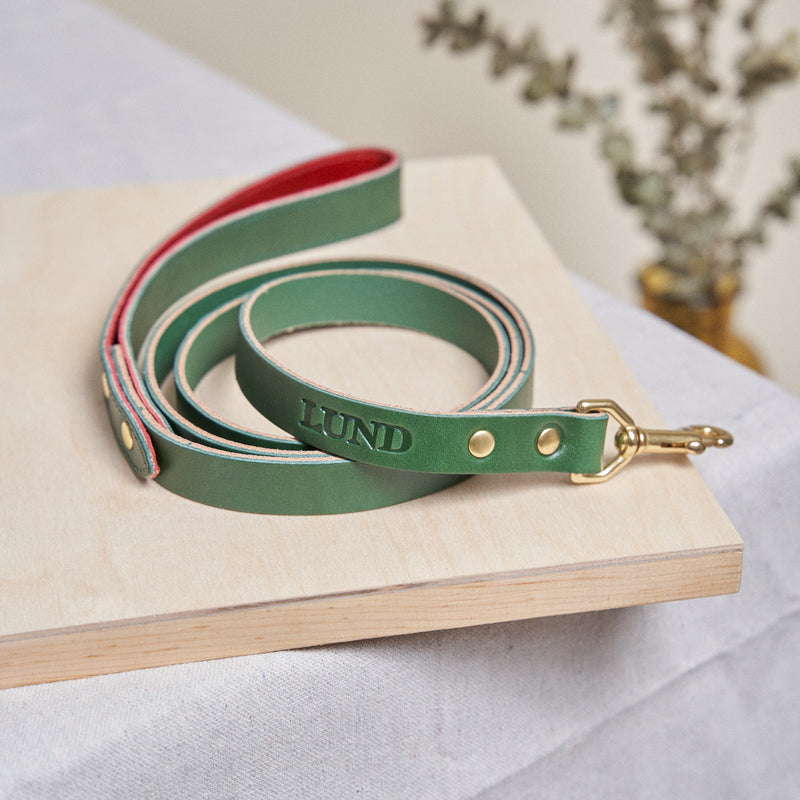 Dog Leash - Zucchini Green