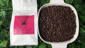 Ethiopia Bloom Coffee Beans (12 oz) by Queen of Sheba Coffee