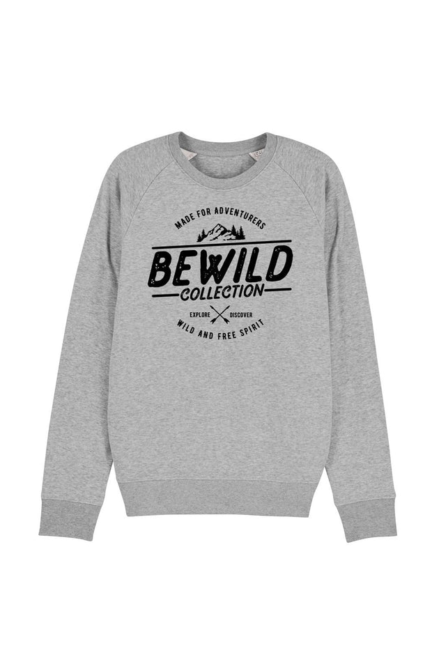 pull_homme_coton_bio_bewild_collection_gris