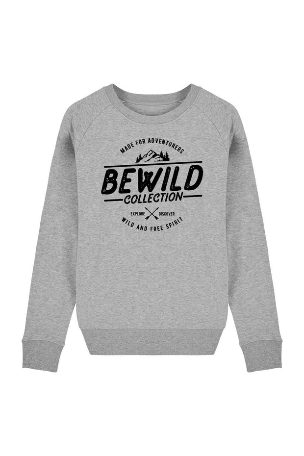 pull_femme_coton_bio_bewild_collection_gris