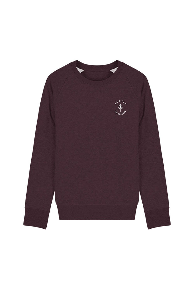 pull_homme_broderie_bewild_collection_sapin_bordeaux