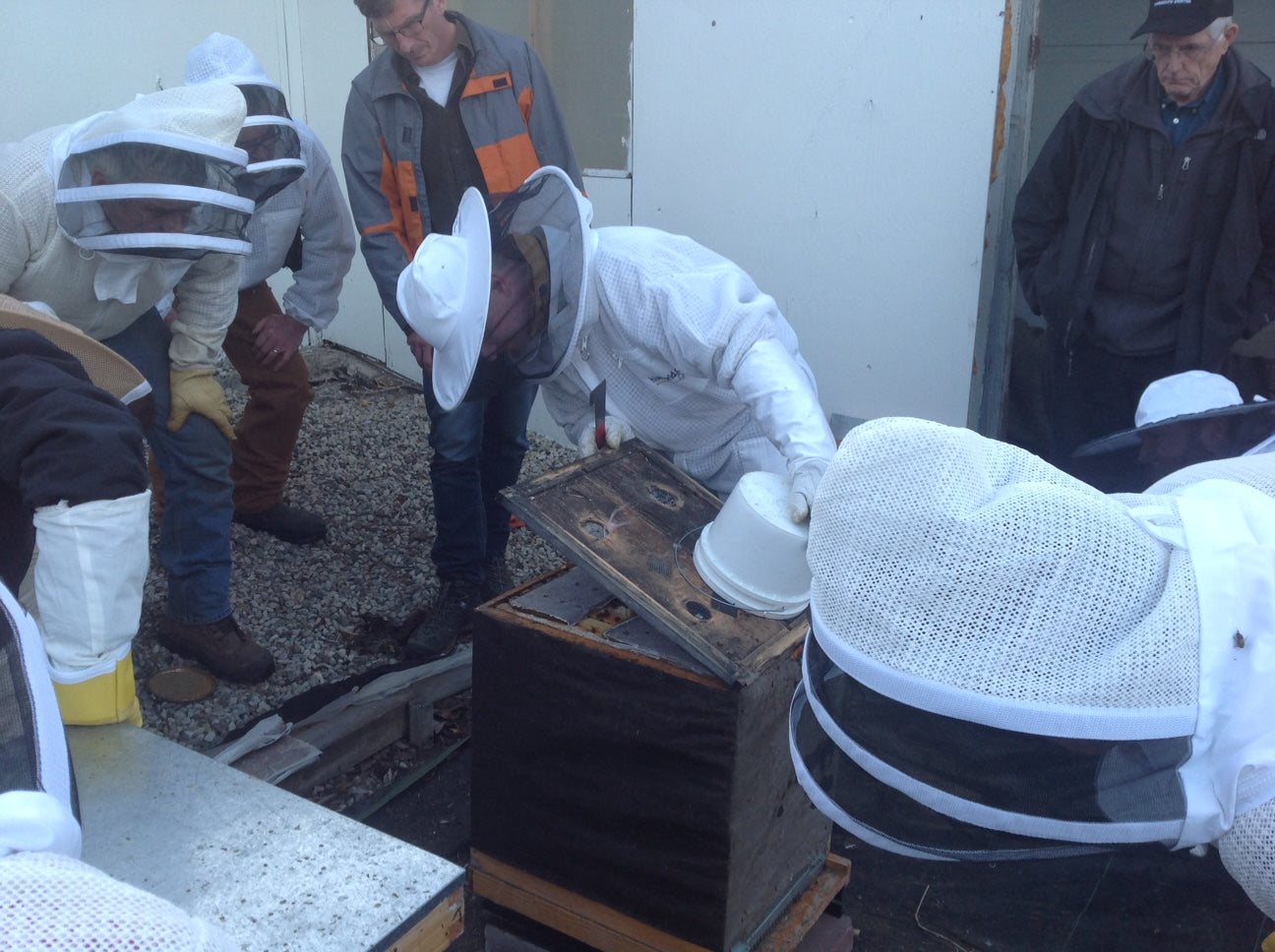 Practical sessions help beginner and experienced beekeepers