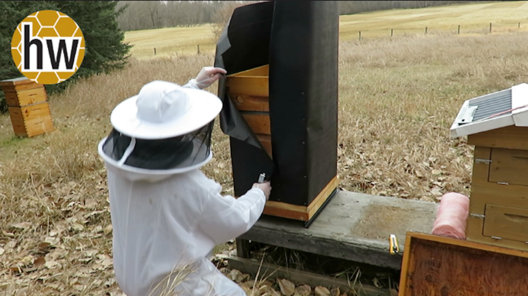 Overwintering: Which way do you wrap or insulate your hives?