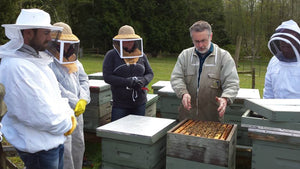 Meet the Beekeeper - 2021 Beekeeping Season