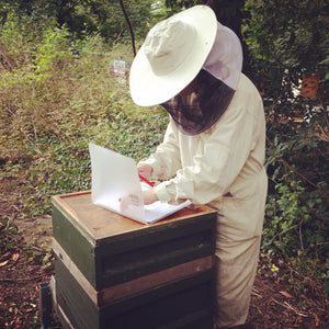 Beginner  Beekeeping Course (1 day) - 2020
