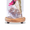 Modern Glass Dome Planter (Pink)