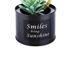 Black Steel Pot & Planter (Green 2)