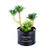 Black Steel Pot & Planter (Green 3)