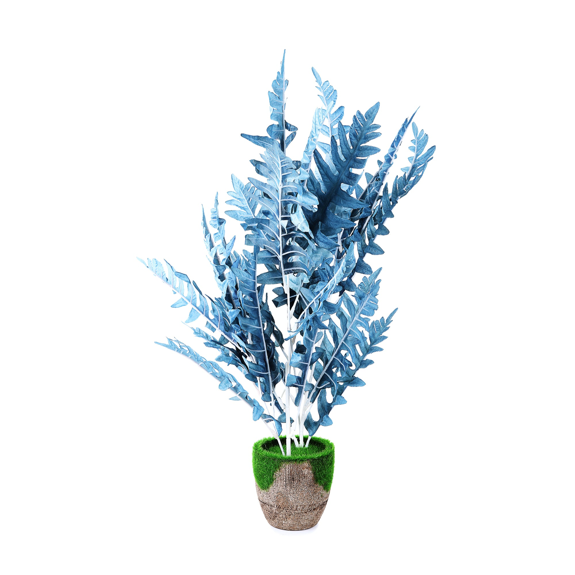Coconut wooden Pot & Planter (Blue)