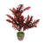Coconut wooden Pot & Planter (reddish)
