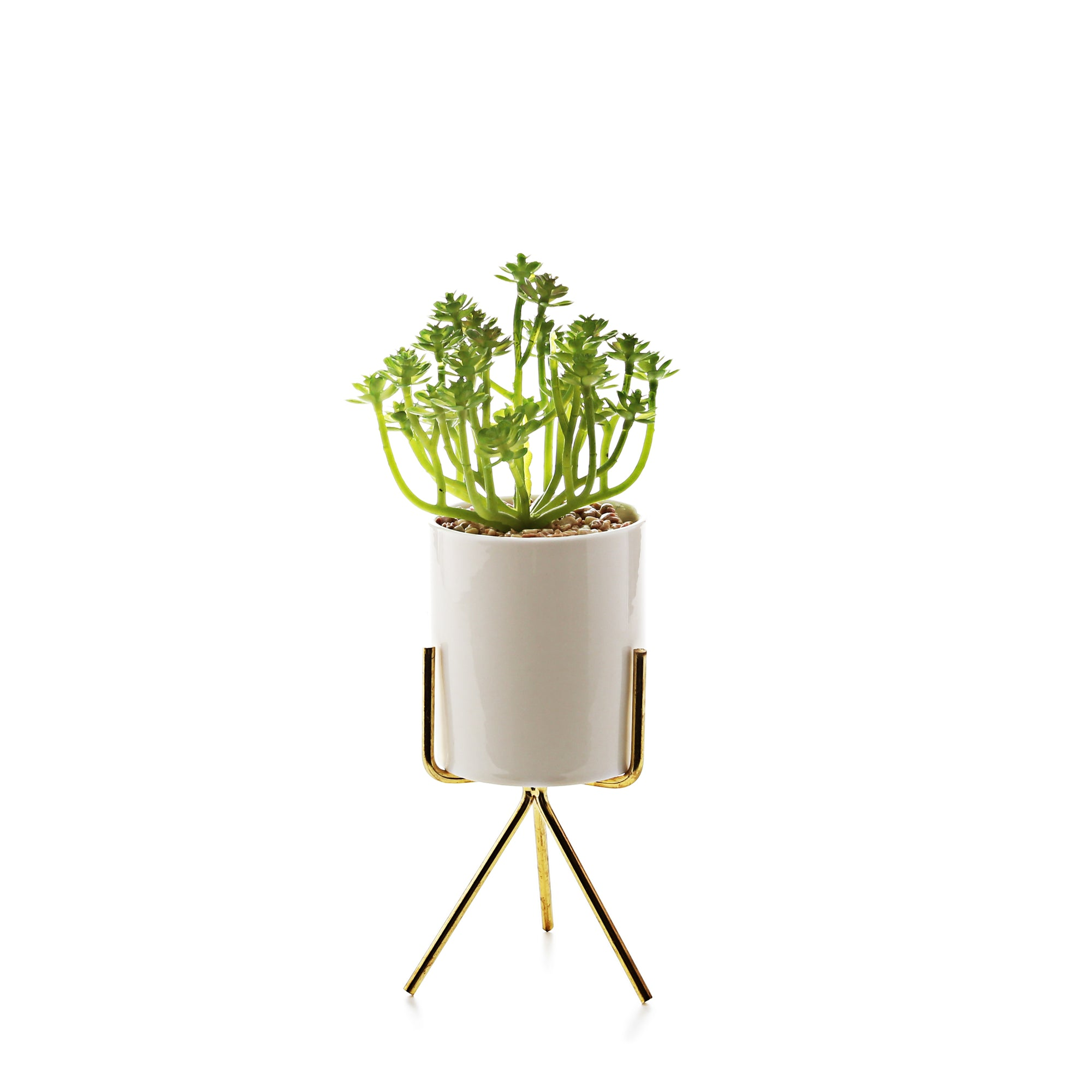 Pot Planter with Golden Stand
