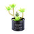 Black Steel Pot & Planter (Lite Green)