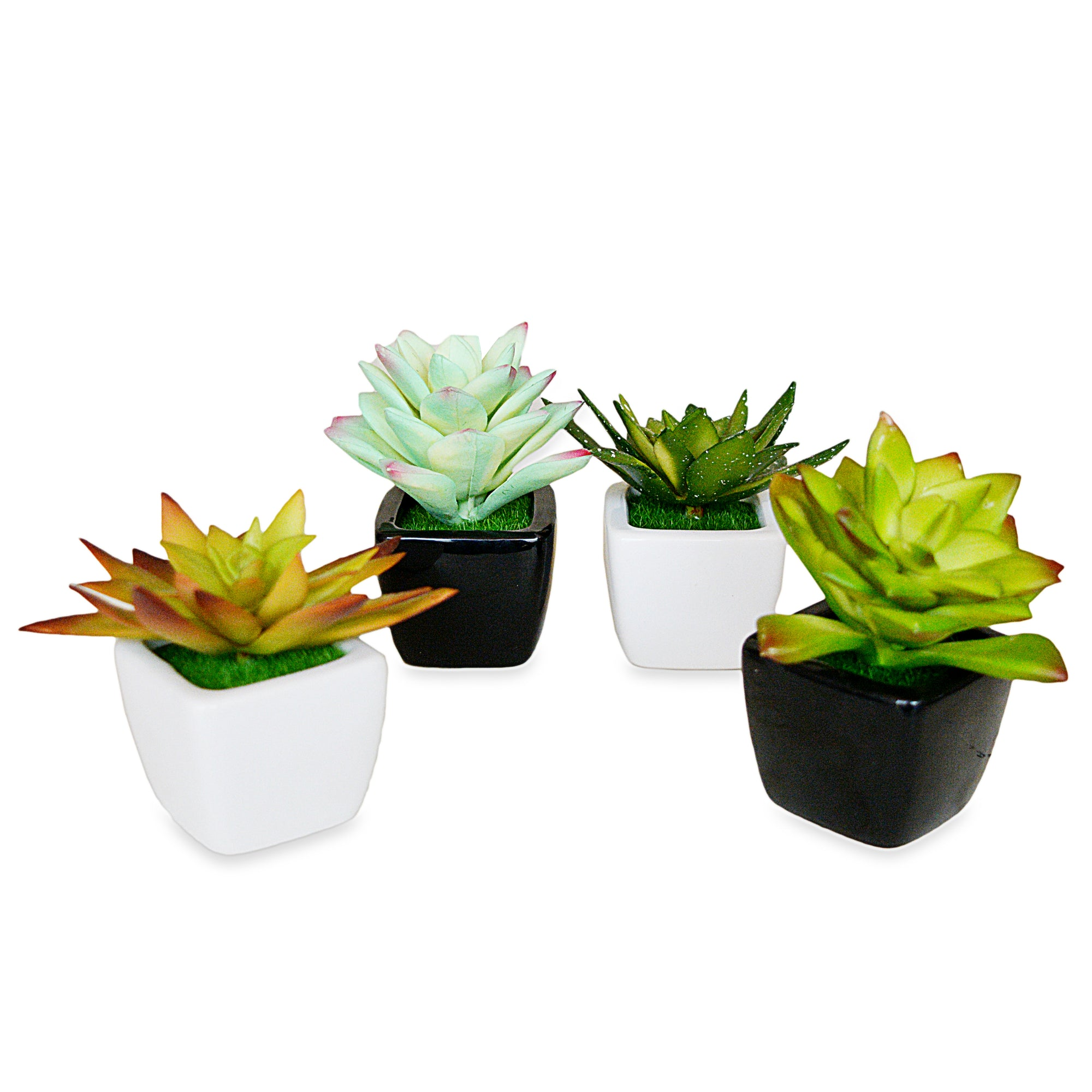 Decorative Small Pot Planter(Set Of 2)