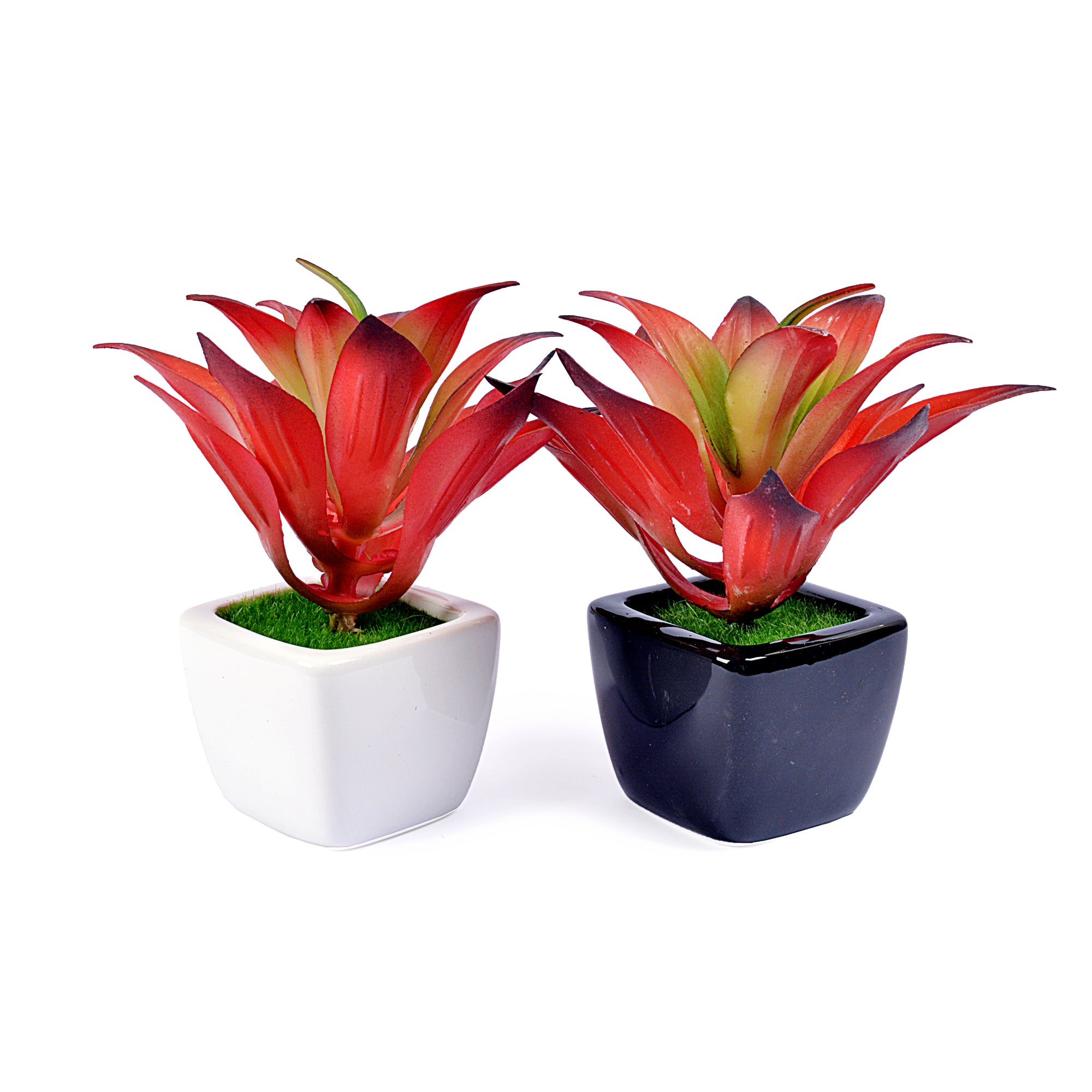 Small Ceramic Decorative Planter (set of 2)