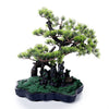 Cypress Bonsai Tree with Hut
