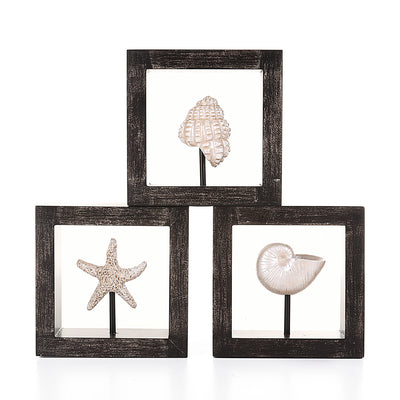Decorative Wall Hanging Sea Shells with Wooden Frames (Set of 3)