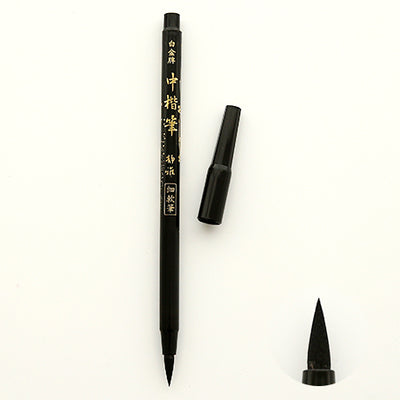 2-Type Calligraphy Brush Pen