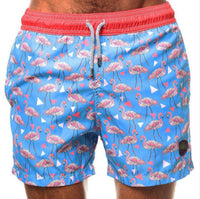Flamingo Mens Swimming Board Shorts