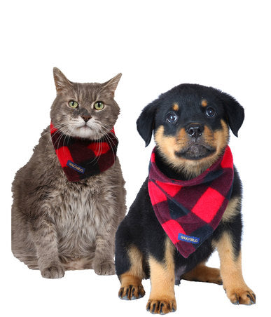 Pet Bandanas-Concession Road Mercantile