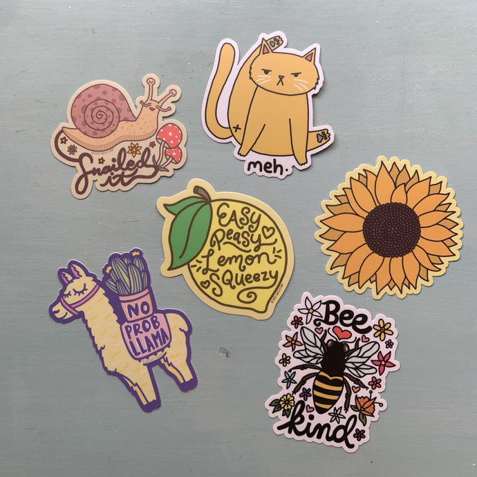 Turtle's Soup Fun & Quirky Stickers