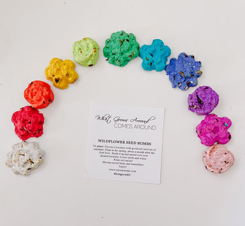 PREORDER NOT RTS Springtime Wildflower Seed Bombs