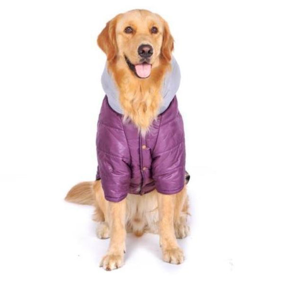 Dog Jacket with Hoody - Fashion Collection-Lucky Paws