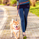 Hands Free Leash Belt - Perfect for Running/Jogging-Leash-Lucky Paws