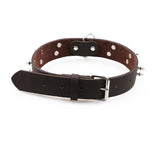 Spiked Dog Collar - Studded Spikes, Genuine Leather-Lucky Paws