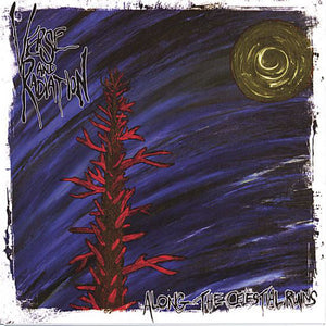 Verse And Radiation - Along The Celestial Ruins (CD)