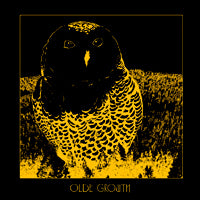Olde Growth - The Owl (LP) Cover Art