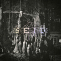 Seid - Magic Handshake (Clear) (IMPORT) (2LP) Cover Art