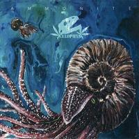 Celophys - Ammonite (IMPORT) (CD) Cover Arts
