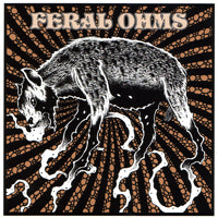 Feral Ohms - Living Junkyard (7 inch) Cover Art